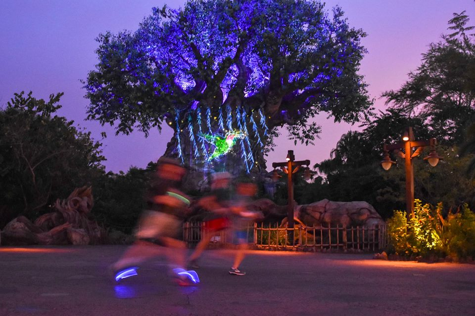 Runners dash past the Tree of Life