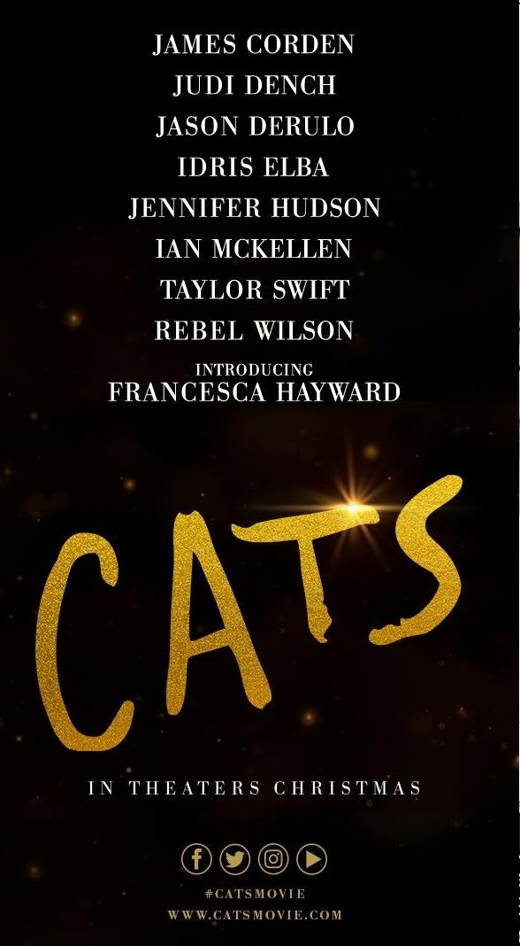 CATS image - flyer