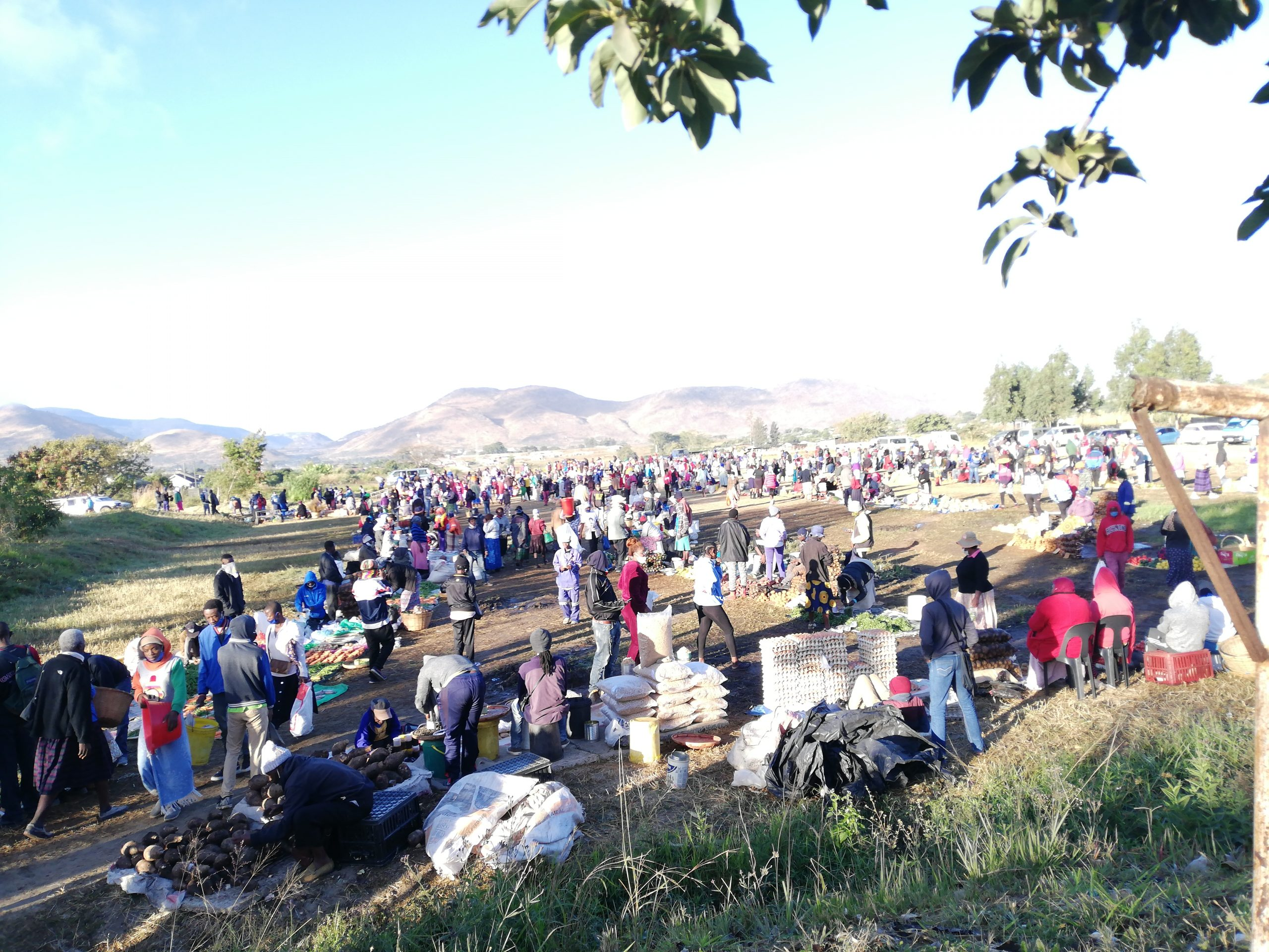 Some-citizens-shun-visiting-fresh-produce-markets-in-Zimbabwe-as-they-are-overcrowded-and-social-distancing-is-often-not-observed-in-the-wake-of-Coronavirus-Farai-Shawn-MatiasheZenger-News-scaled-1