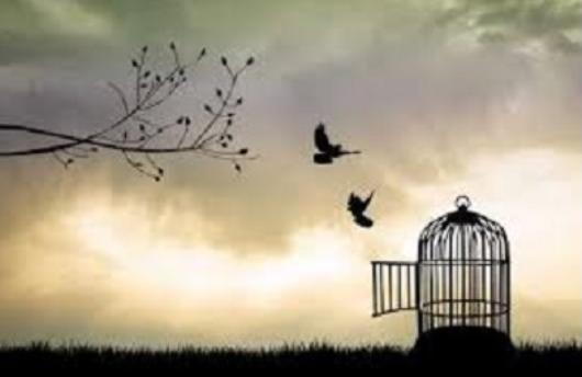salvation - freedom