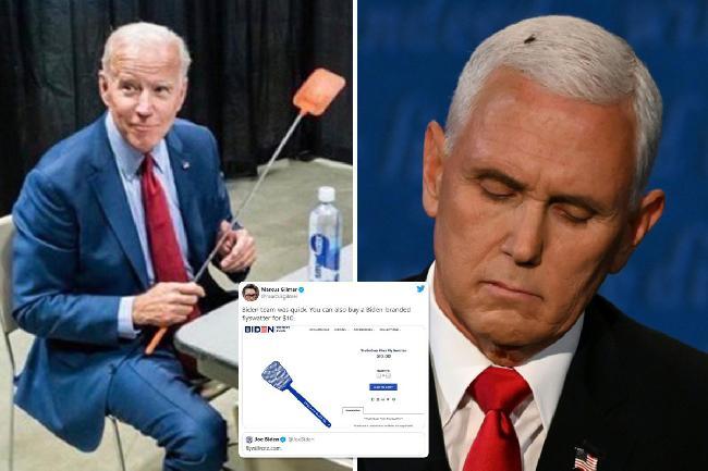 Biden-Swatter-Pence