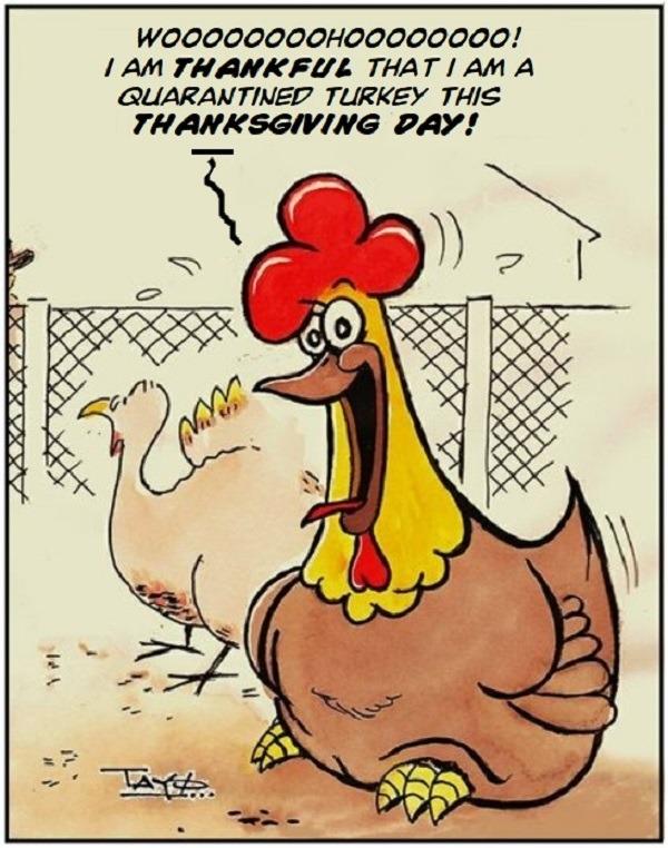 THANKSGIVING DAY 2020 - Quarantined Turkey