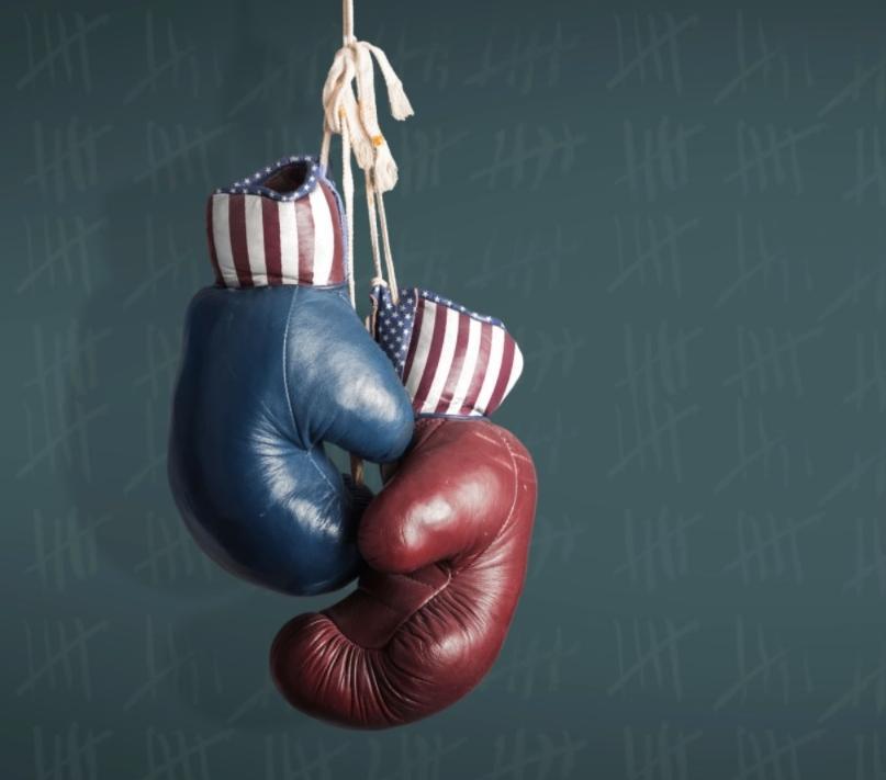 USA Stars & Stripes Boxing Gloves