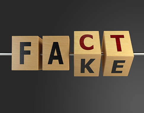 Confirmation Bias - Fact or Fake Concept With Wooden Cubes