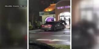 car rams through maryland taco bell