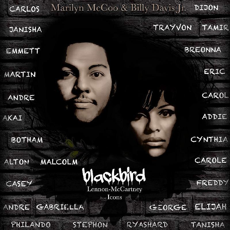 McCoo & Davis - Blackbird