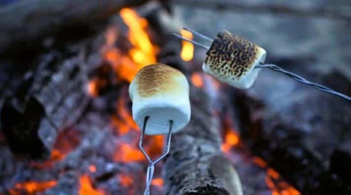 Roasting Marshmallows (Getty)