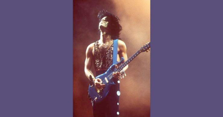 Prince & blue guitar (Juliens)